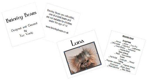 Brierley Bears | Hang tags | individually designed