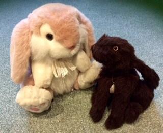 Heri making friends with Rosie the Rabbit